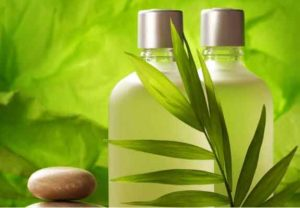Image result for natural skin care products